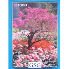 In de tuin 1500 st nr. 1715