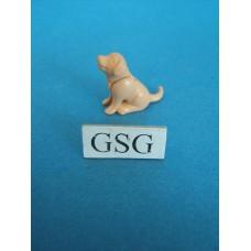 Hond nr. 4357-02