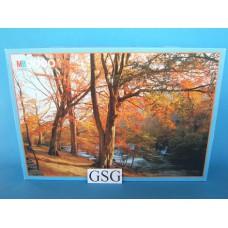Herfst in Wales 2000 st nr. 3280.41