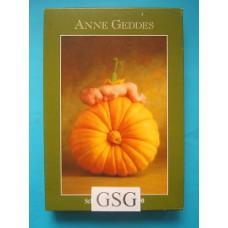 Anne Geddes pompoen 500 st nr. 57901