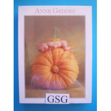 Anne Geddes baby slapend op pompoen 900 st nr. 57622-01
